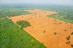 Vista de pájaro del campo del arroz en Tailandia Imagenes de archivo