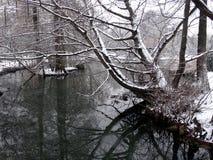 Vista de Parco Sempione con nieve Imagen de archivo