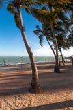 Vista de Ponta Verde Imagem de Stock