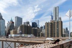 Vista de rascacielos del puente de Brooklyn, céntrica, Nueva York foto de archivo libre de regalías