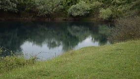 Vista de relajaci?n de la naturaleza albanesa hermosa La lluvia ligera cae en un lago natural rodeado por la flora verde metrajes