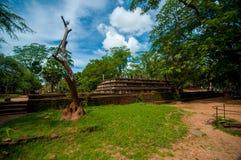 Vista de ruínas de um Pollonaruwa Fotos de Stock