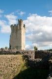 Vista de ruínas do castelo Imagem de Stock