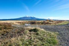 Vista de Ruapehu da estrada do deserto em Nova Zelândia Foto de Stock