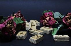 Vista de runas de madeira em torno das flores secas de rosas vermelhas, contra um fundo escuro Fundo do borrão imagens de stock royalty free