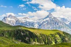 Vista de Schreckhorn, cumes suíços Foto de Stock Royalty Free