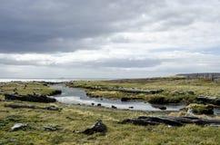 Vista de Seno Otway - Patagonia - o Chile Imagens de Stock