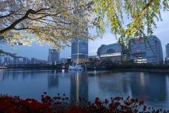 Vista de Seul en el parque de Seokchonhosu del lago Fotos de archivo libres de regalías
