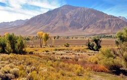 Vista de Sierra Nevada oriental E.U. Hwy 395 imagem de stock royalty free