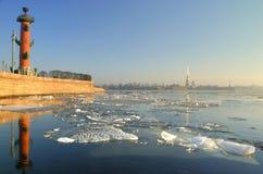 Vista de St Petrsburg Foto de archivo