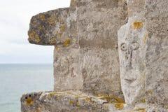 Vista de Stevns Kliff - penhascos de uma pedra calcária em Dinamarca Foto de Stock Royalty Free