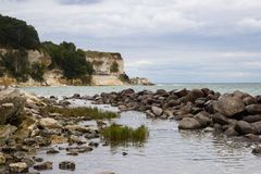 Vista de Stevns Kliff - penhascos de uma pedra calcária em Dinamarca Imagens de Stock Royalty Free