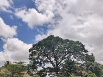 Vista de surpresa das nuvens foto de stock