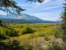 Vista de Taylor Creek Fotografia de Stock Royalty Free