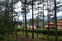 Vista de templos budistas Foto de archivo