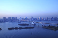 Vista de Tokyo da baixa na noite. foto de stock