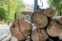 A vista de trás de uma pilha de grandes logs carregou na área de carga de um reboque para a remoção foto de stock royalty free