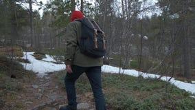 Vista de tr?s de um dia ocasional da despesa do indiv?duo fora, andando na floresta do outono apenas Homem com a apreciação da tr filme