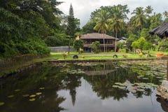 Vista de Tuk-Tuk ao lago Toba Fotos de Stock