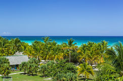 vista de um jardim tropical das palmeiras macias na praia, contra o oceano dos azuis celestes de turquesa e o fundo do céu azul Imagens de Stock Royalty Free