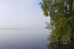 Vista de um lago da pesca Foto de Stock Royalty Free