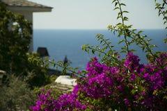 Vista de um monastério em uma ilha grega, Thasos Imagens de Stock