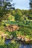 Vista de um rio pequeno e uma área verde bonita com abetos e outras árvores imagem de stock