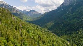 Vista de uma altura a uma cordilheira com árvores coníferas Imagem de Stock Royalty Free