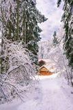 Vista de uma cabine de madeira da montanha na floresta da montanha, Medvednica, Zagreb, Croácia foto de stock royalty free
