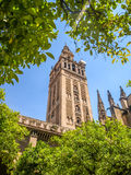Vista de uma catedral em Sevilha, spain fotos de stock