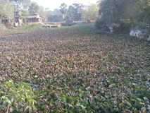 Vista de uma exploração agrícola secada fotografia de stock