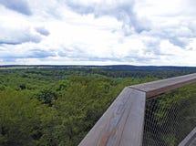 Vista de uma torre alta sobre a floresta à paisagem Foto de Stock