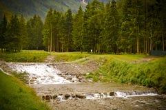 Vista de uma torrente em um parque Fotos de Stock
