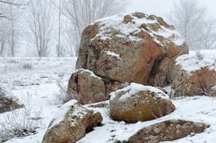 Vista de un canto rodado de piedra grande Niebla de Frost En el fondo, los árboles se cubren con el foco suave de la helada Imágenes de archivo libres de regalías