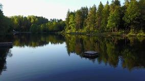 Vista de un lago en Alemania que vuela arriba con la opinión agradable sobre los árboles Ebnisee, movimiento lento de la cámara almacen de video