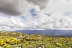 Vista de un paisaje de un lago rodeado por las montañas y los árboles en un día nublado Fotos de archivo
