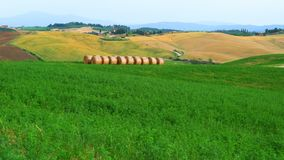 Vista de un paisaje verde típico hermoso de Hilly Tuscany metrajes