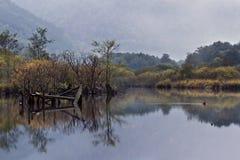 Vista de un pantano en la montaña de los Vosgos, Francia Imagen de archivo libre de regalías