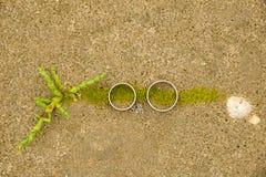 Vista de un par de anillos de bodas de oro blancos fotos de archivo libres de regalías