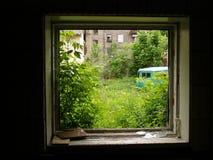 Vista de un patio trasero de una ventana Fotografía de archivo