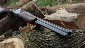 Vista de un rifle de dos cañones en el bosque metrajes