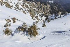 Vista de un valle de la montaña del invierno Foto de archivo
