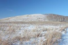 Vista de una colina Bald cubierto con la nieve, Siberia, Rusia Fotos de archivo libres de regalías