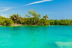 Vista de una costa de la isla del calafate de Caye, Beli foto de archivo libre de regalías