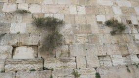Vista de una pared occidental en Jerusalén Israel almacen de video