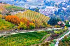 Vista de viñedos y de pueblos en colores del otoño en Italia del norte fotografía de archivo