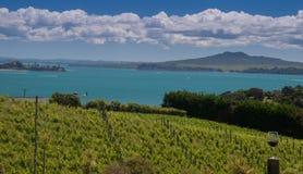 Vista de Waiheke - 2 Imagem de Stock Royalty Free