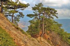 Vista de Yalta del rastro en la cuesta meridional de las montañas crimeas Foto de archivo