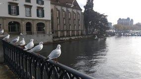 Vista de Zurich foto de archivo libre de regalías