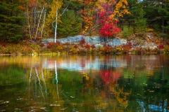 Vista degli alberi variopinti durante la stagione di autunno Immagini Stock
